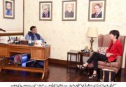 DFID Director Ms. Joanna Reid called on Hamza Shahbaz
