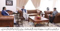 Chief Secretary Jawad Rafique Malik called on Chief Minister Punjab