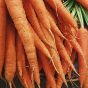 ¿Por qué las zanahorias son de color naranja?