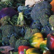 Brócoli, cultivo orgánico