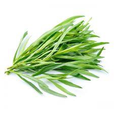 Estragón: planta aromática