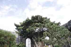 Las Ruinas, Cartago