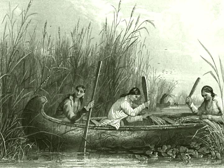 20170402A S. Eastman,The American Aboriginal Portfolio, .jpg
