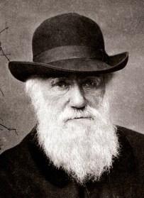 Charles Darwin in 1881