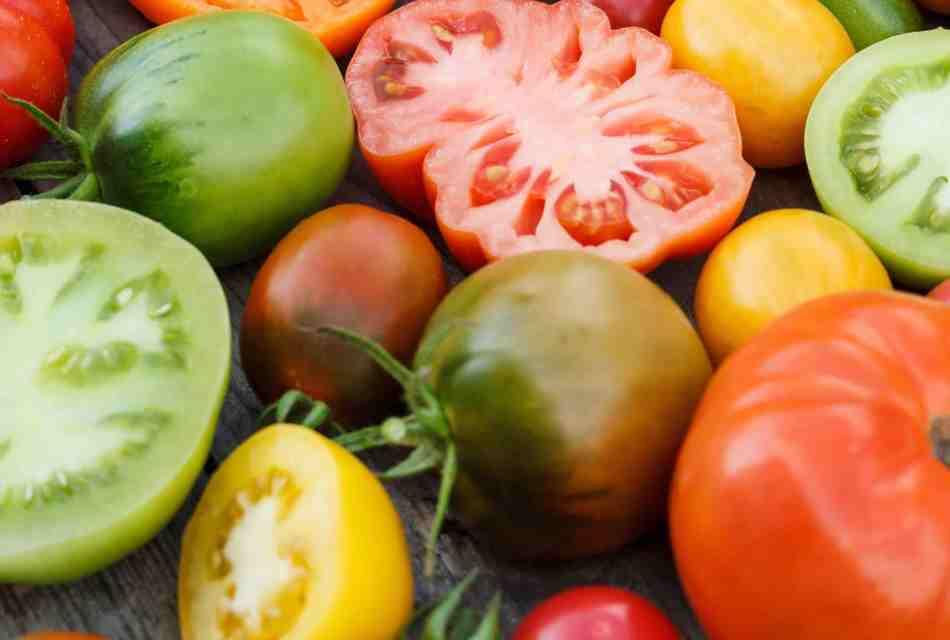 20180213C Tomates variées www.gardenzeus.com.jpg