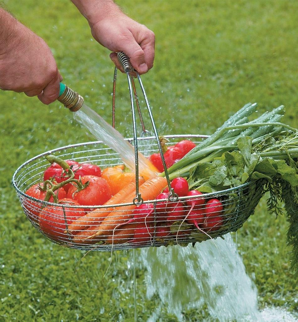 Vegetables in a wire basket being rinsed by a hose.