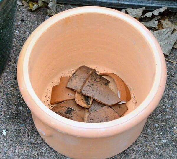 Terracotta pot shards in the bottom of a pot.
