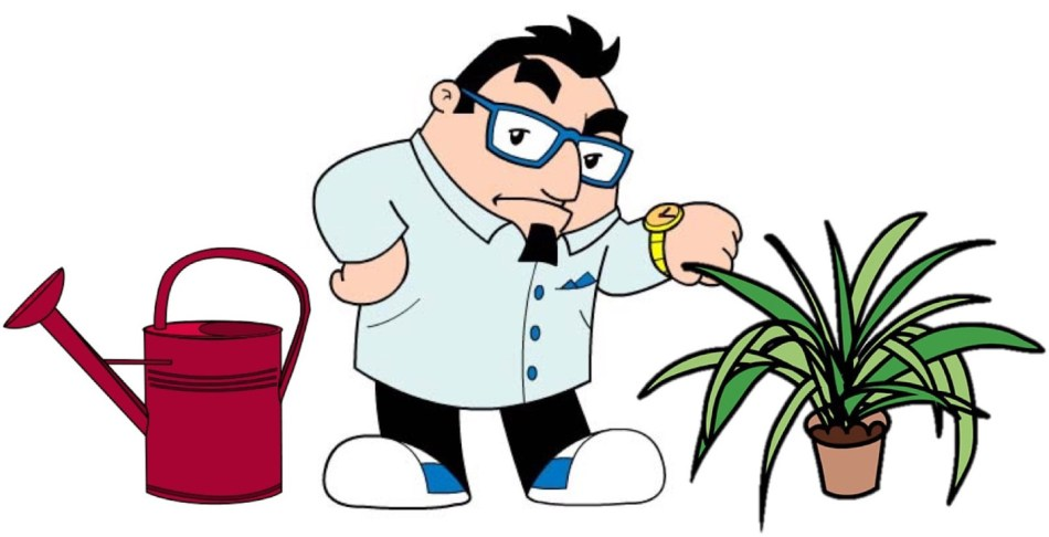 Man looking at watch, watering can and houseplant.
