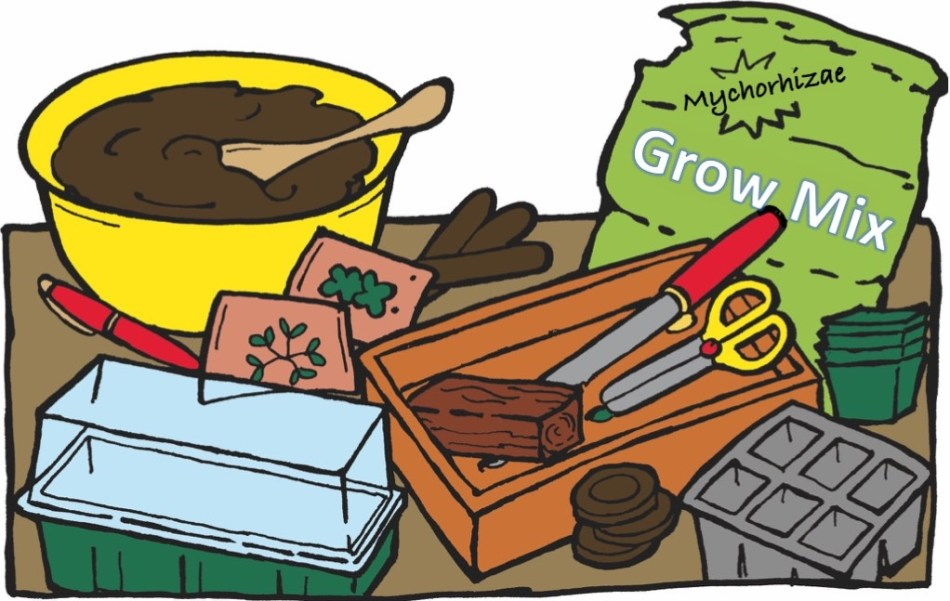 Materials needed for sowing seeds indoors: seed starting mix, soil, pots, trays, etc.