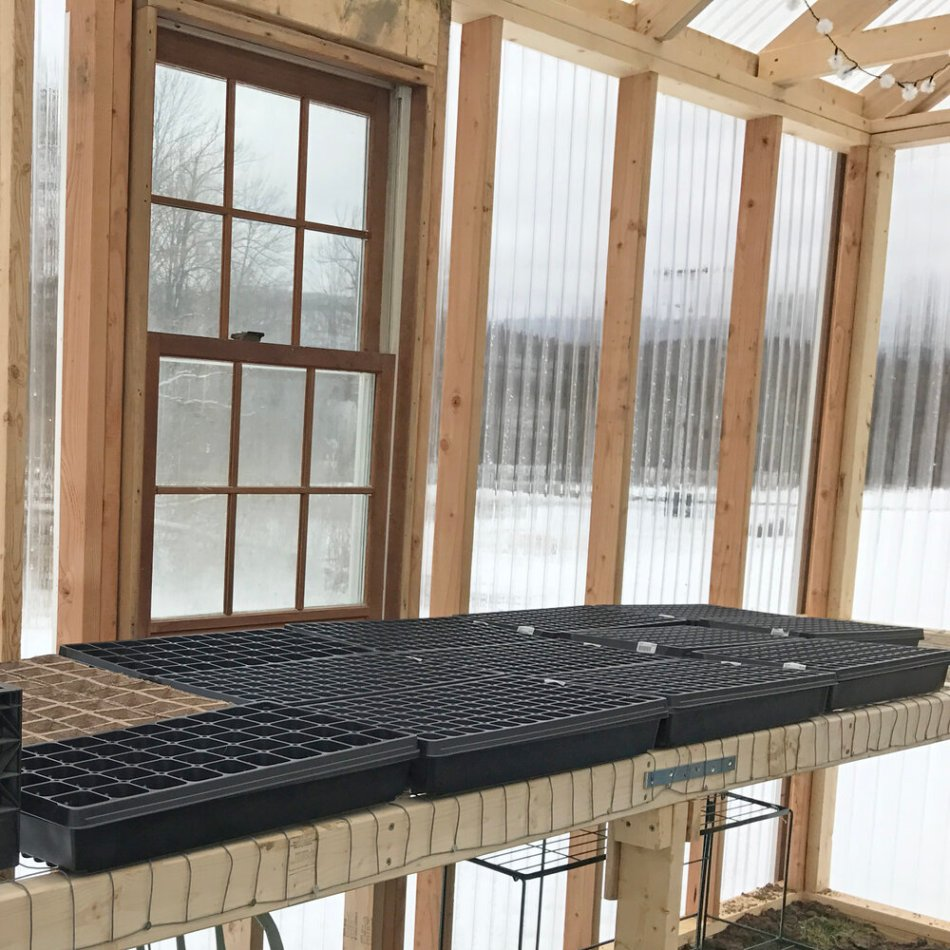 Home greenhouse with empty seedling trays