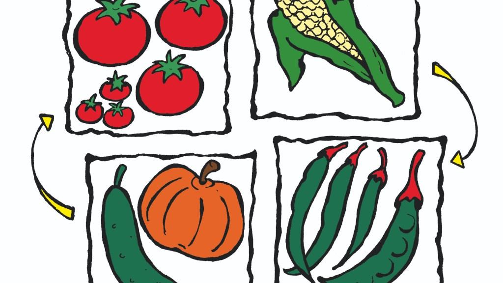 Illustration showing 4 vegetables rotating.