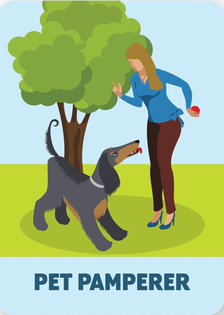 Illustration of pet pamperer