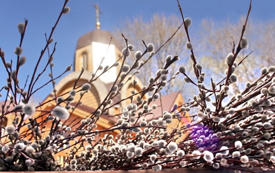 Pussy willows in front of Orthodox church.