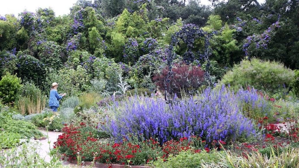 Herb Garden at Huntington Botanical Garden
