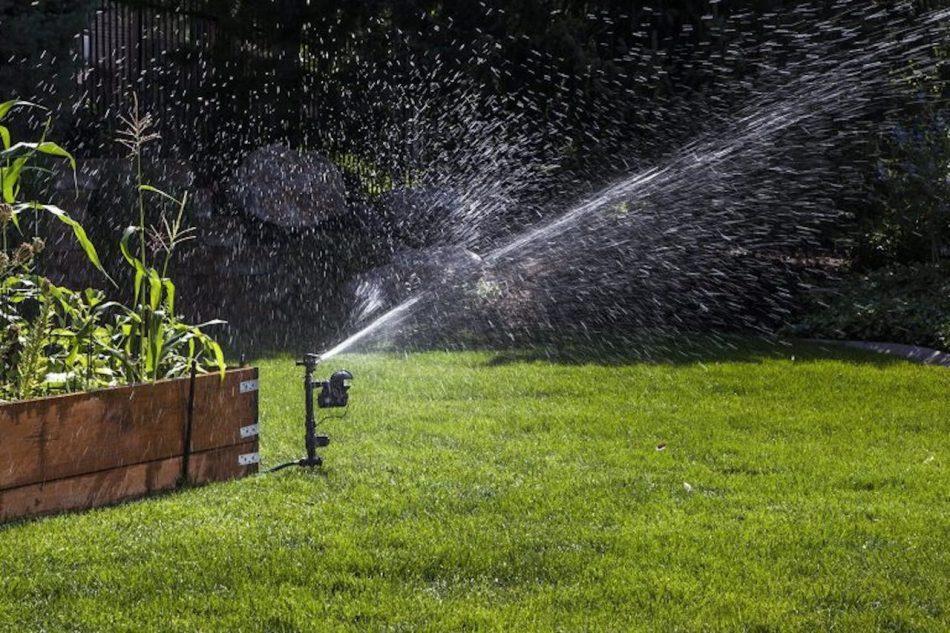 Motion-activated sprinkler.