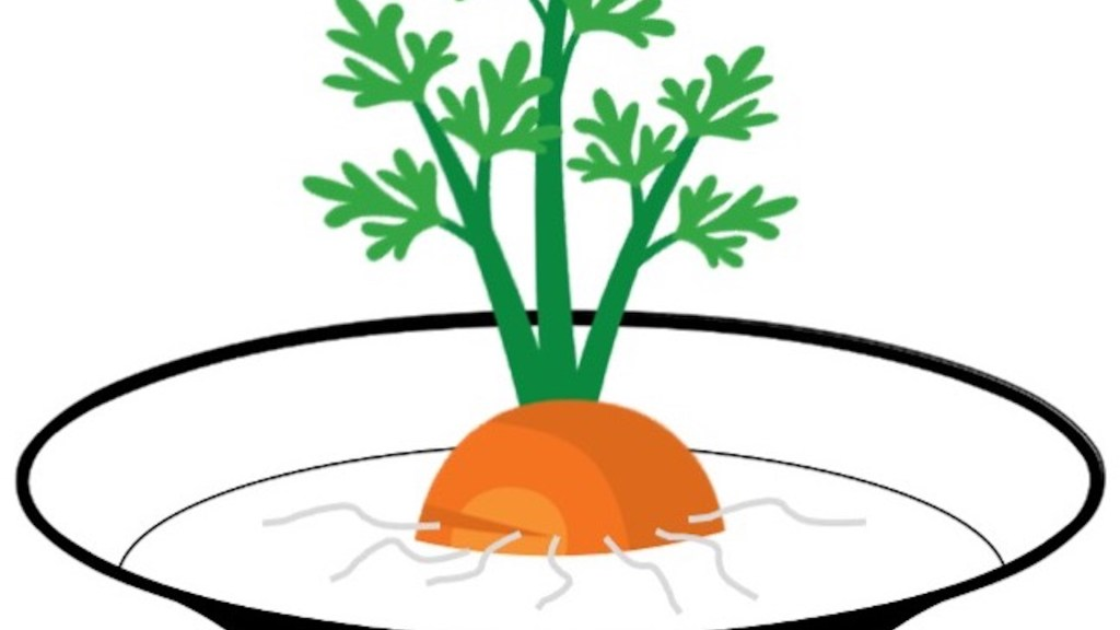Carrot top rooting in a bowl of water.