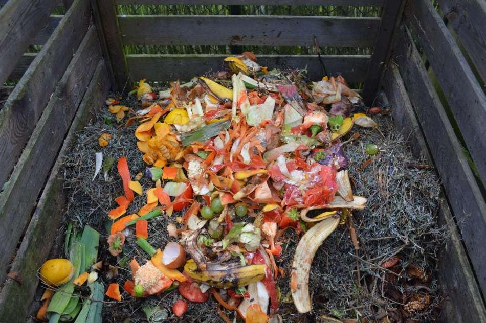 Compost bin with kitchen waste.