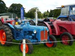 A wee Fordson, big in character