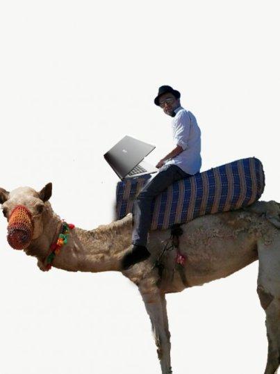freelancer, camel