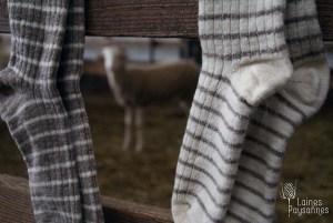 Laines Paysannes paires de chaussettes rayées en laines locales