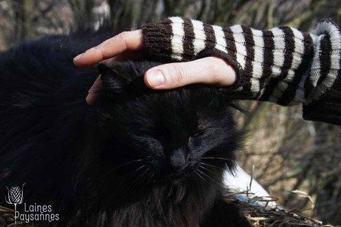 Laines Paysannes mitaines rayées bicolores en laines locales