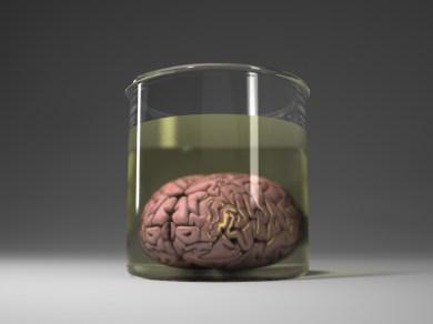 Brain_Jar_v003