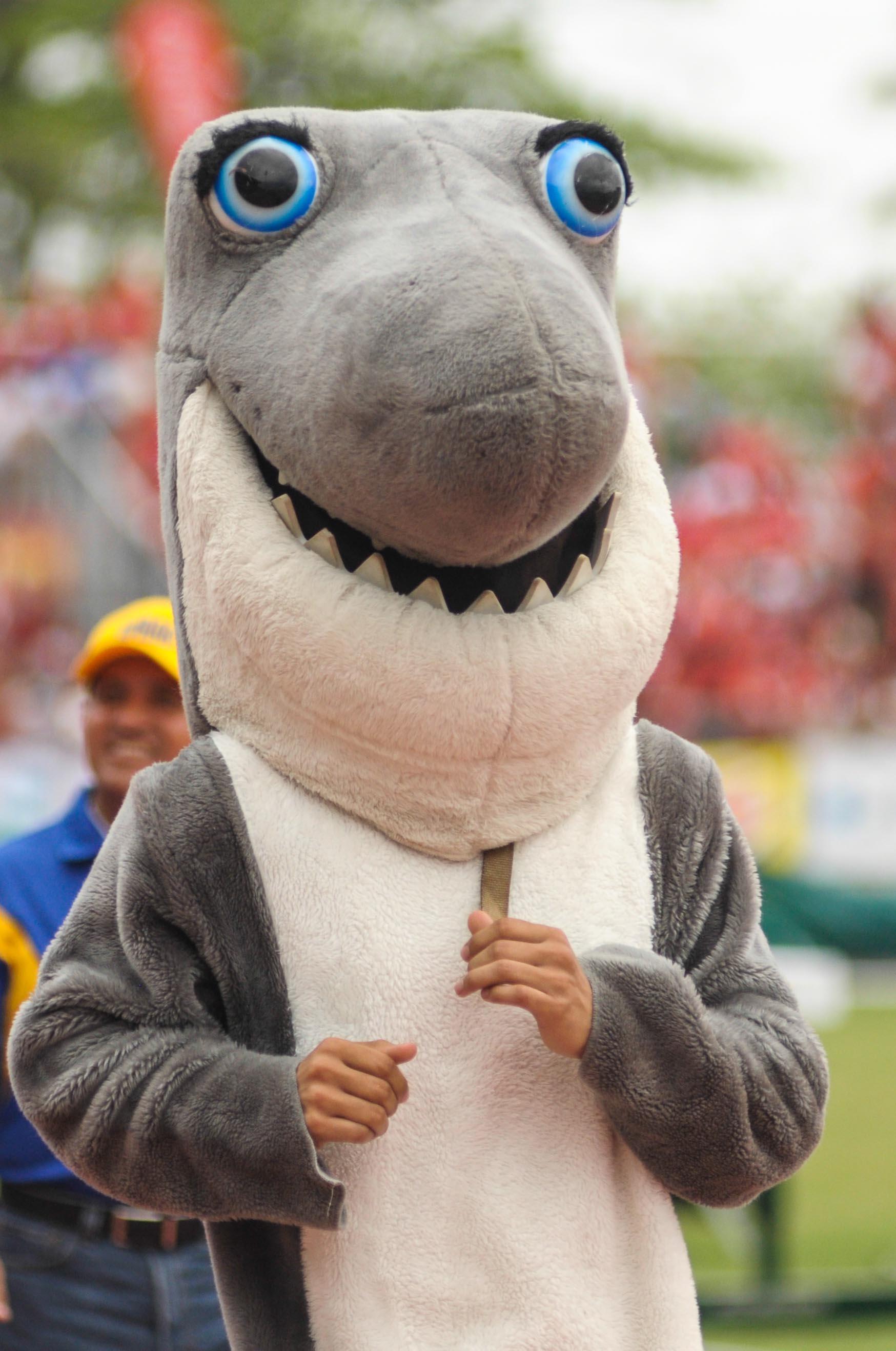 Mascotas Tiburones UPR Aguadilla