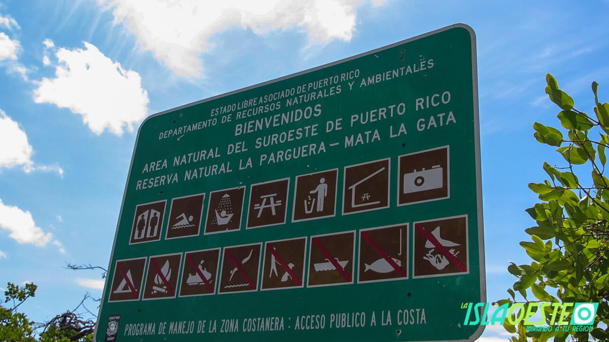 Mata la Gata Lajas La Parguera 8128