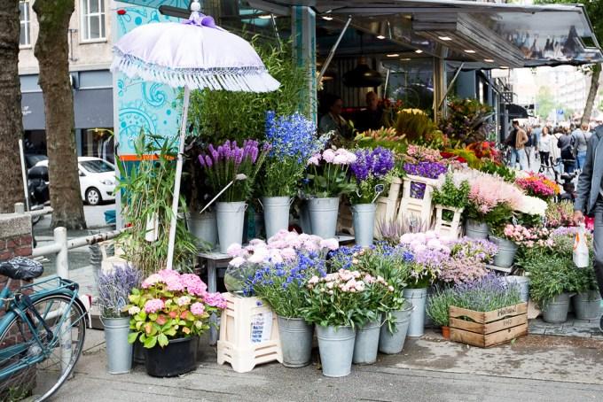 Rotterdam - flowers