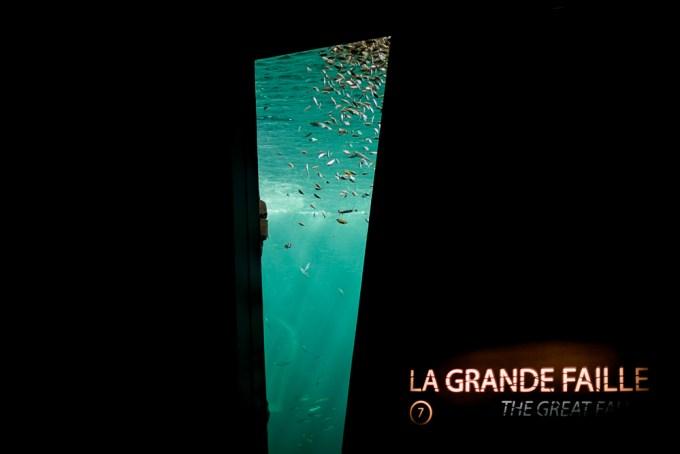 Grand Nausicaa visite