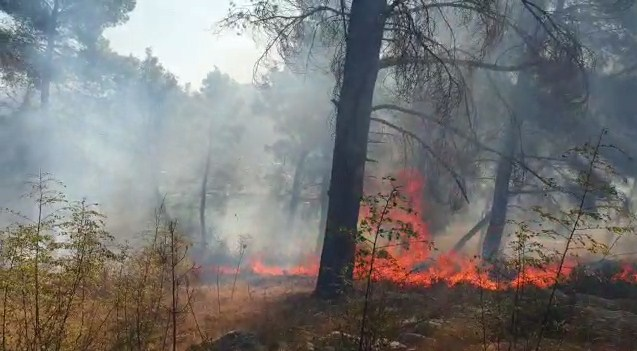 Tjetër vatër zjarri në Krastë