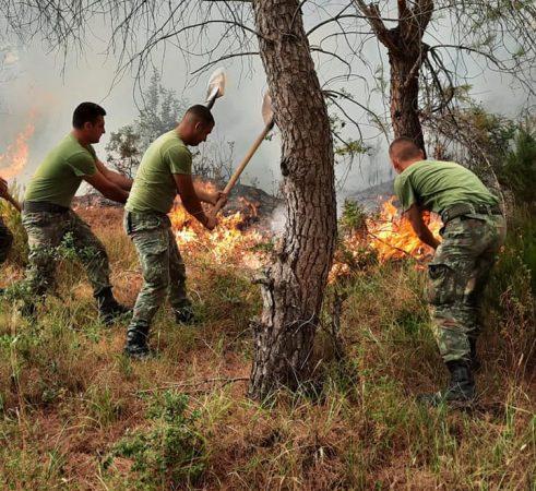Vijon prej katër ditësh zjarri në Karaburun