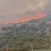 I vuri zjarrin kodrës me shkurre në Ksamil