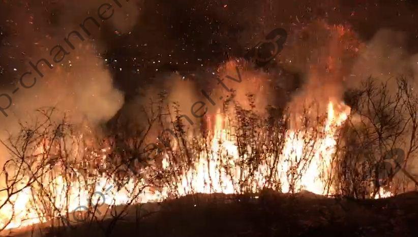 Zjarret në Shkodër
