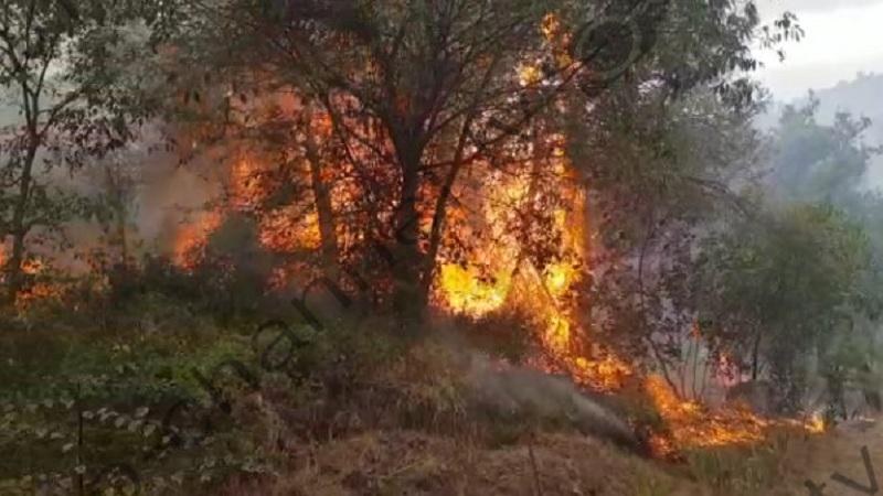 Situata e zjarreve në vend/ 10 vatra aktive