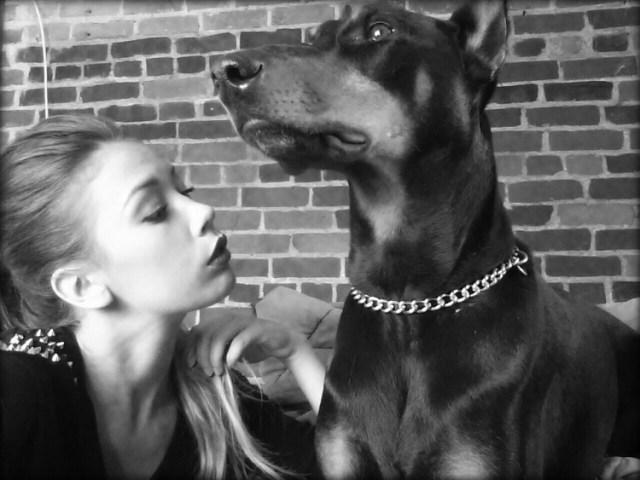 Astro-amour-chien