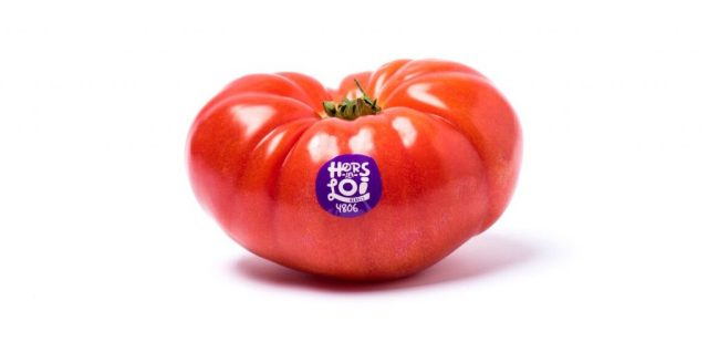 hors-la-loi-Tomate