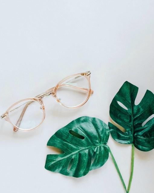 Minimalisme, lunettes et feuilles