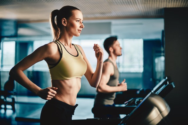 motivation gym, programme