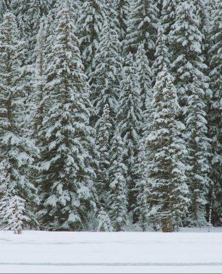 entraînement extérieur hiver, cover
