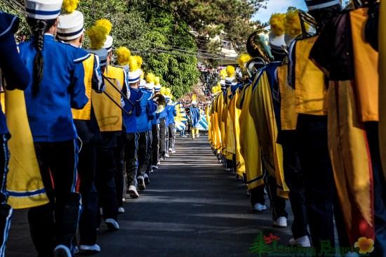 Marching Band SLU