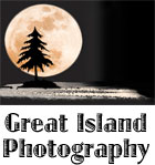 Great Island Photography