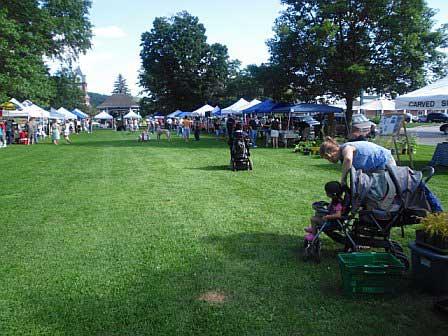 Farmers Market View 2