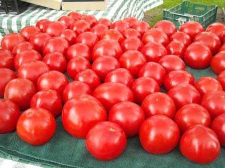 Tomatoes from Sunset Farm