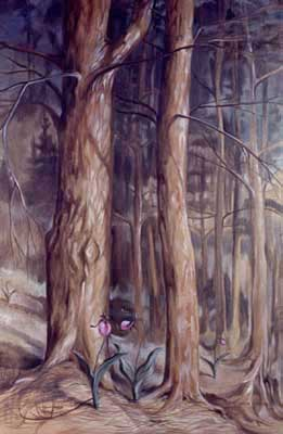 Pines and Lady Slippers by E. Thor Carlson