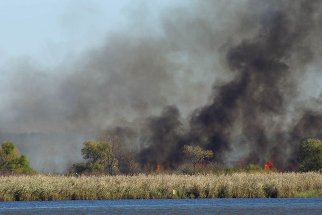 Cattail Marsh Fire
