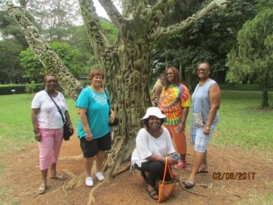 Aburi Botanical Gardens Ghana Feb 2017 Lake Arbor Travel-12