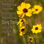 "1 Thessalonians 5:18 – ""Give thanks in all circumstances; for this is the will of God in Christ Jesus for you."""