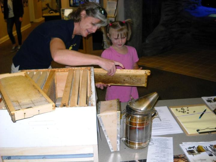 Beth Wilson talks to a young visitor at the Wolf Creek Earth Day celebrations, describing how bees would make use of a drawn frame.