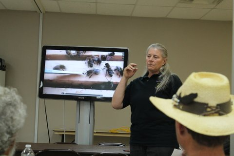 Dorothey Morgan showed a brief video of a mite-biter bee.